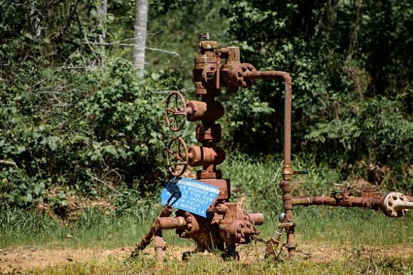 В Ленинградской области подключены к новому газопроводу две деревни
