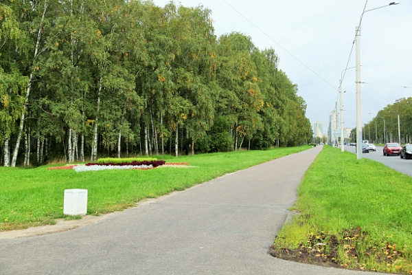 Компания «Теплосеть Санкт-Петербурга» приступает к реконструкции трубопровода в парке Александрино
