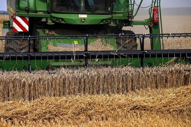 Минсельхоз США сохранил прогноз сбора пшеницы в РФ в текущем году на уровне 72,5 млн тонн