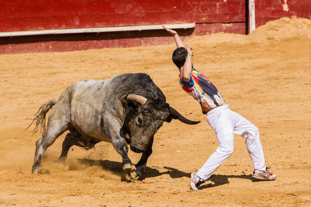 Премаркет. На что рассчитывают быки