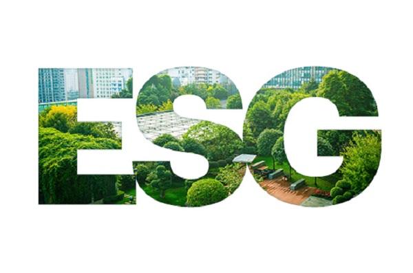 Эксперты обсудили перспективы внедрения практик устойчивого развития