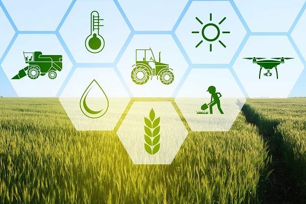 Для аграриев провели семинар по вопросам повышения энергоэффективности