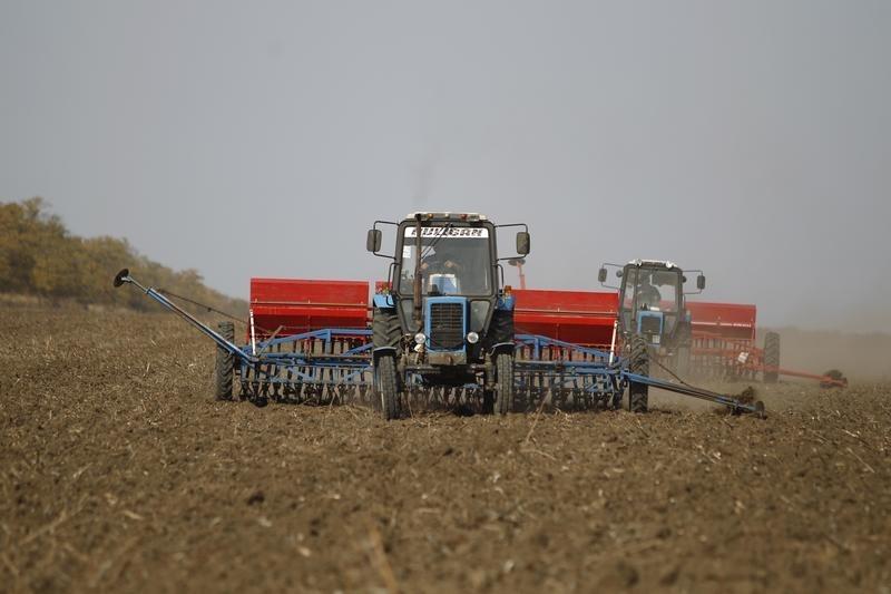 Причиной падения цен на российскую пшеницу до $238 за тонну стал низкий спрос - эксперты