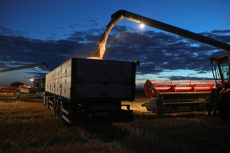 Экспортные цены на пшеницу РФ подросли на прошлой неделе вслед за мировыми