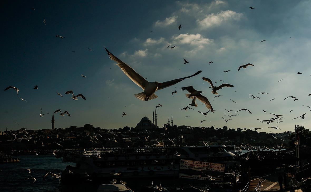 Запрет на полеты в Турцию и Танзанию. Что делать туристам