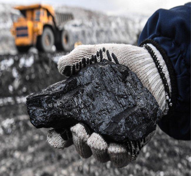 Роснедра выставят на торги месторождение угля после письма Путину