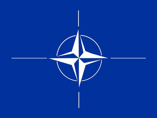 Эксперты аналитического центра США при НАТО разругались из-за России
