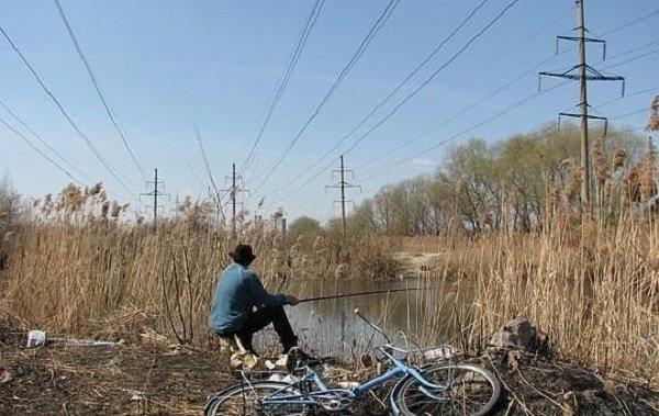 В Пермском крае нарушение правил электробезопасности  вблизи ЛЭП привело к гибели человека