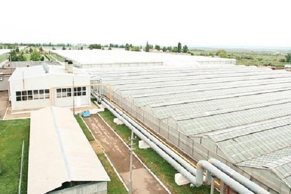 «Россети ФСК ЕЭС» завершила в Липецкой области проект техприсоединения стоимостью 134,4 млн. рублей