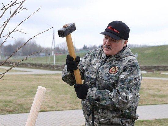 Оппозиция Белоруссии оценила