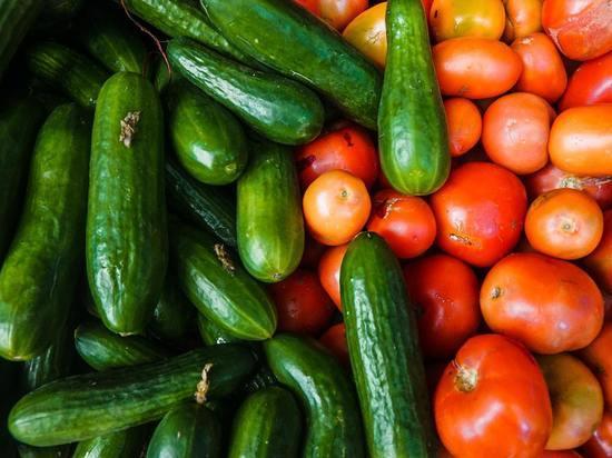 Названы самые «химически чистые» виды помидоров и огурцов