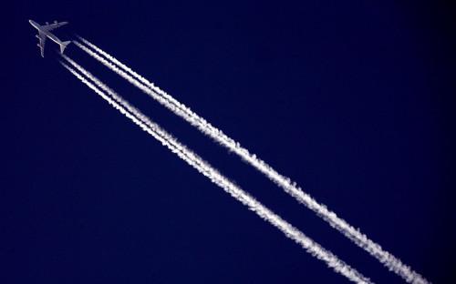 Авиакомпании запросили рекордное число рейсов на курорты Черного моря