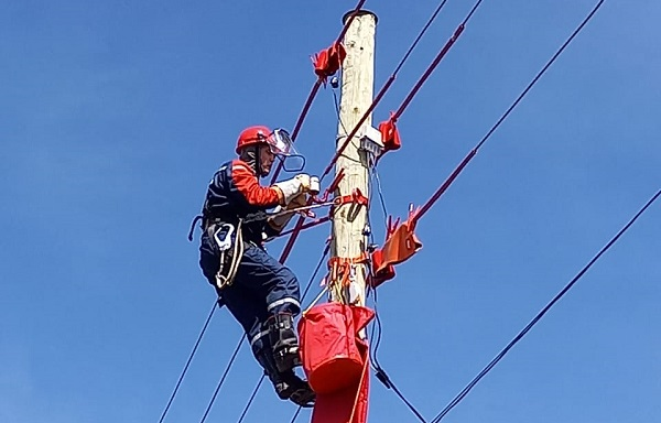 «Россети Ленэнерго» взяла на баланс электросетевое имущество «дачников»