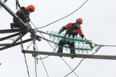 Компания «Россети Ленэнерго» отремонтировала свыше 3 тысяч км линий электропередачи и почти 2 тысячи подстанций