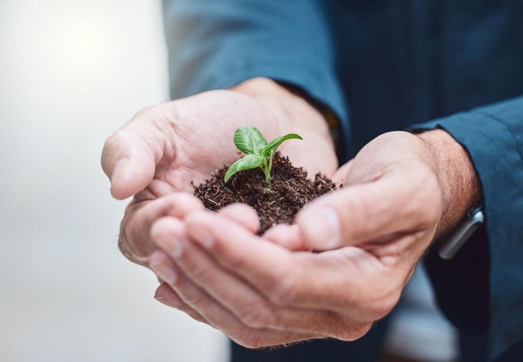 6 идей, как начать зарабатывать на экологии