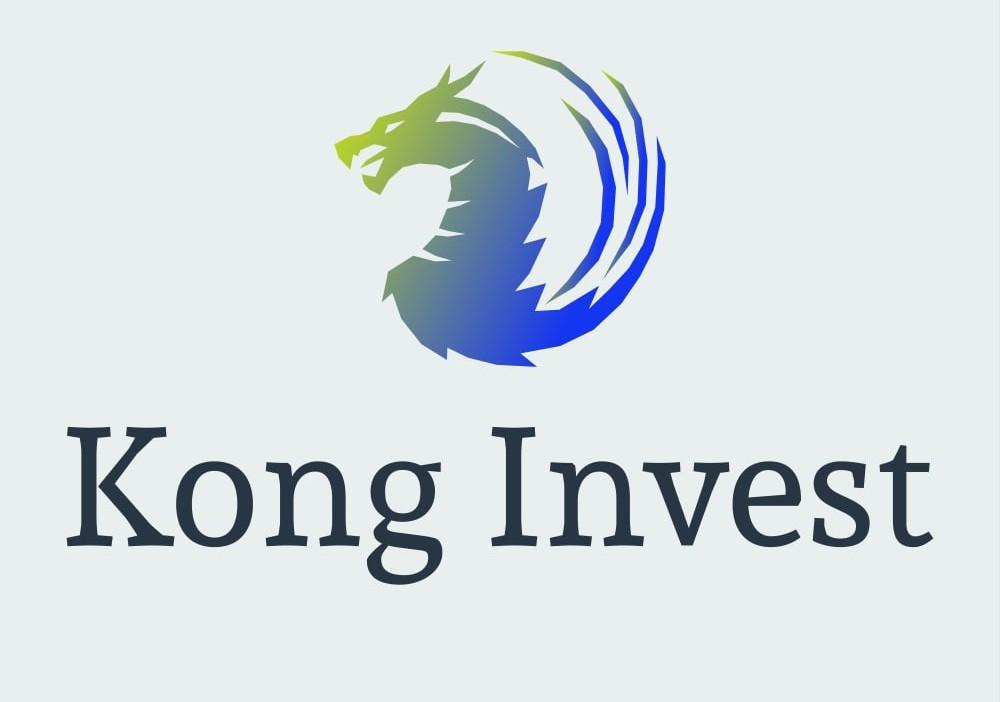 Инвестиционная гонконгская компания Kong invest